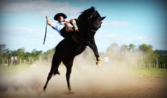 Luiz Vianna (Eduardo Amorim) Tags: gaúcho gaúchos gaucho gauchos cavalos caballos horses chevaux cavalli pferde caballo horse cheval cavallo pferd crioulo criollo crioulos criollos cavalocrioulo cavaloscrioulos caballocriollo caballoscriollos pampa campanha fronteira bagé riograndedosul brésil brasil sudamérica südamerika suramérica américadosul southamerica amériquedusud americameridionale américadelsur americadelsud cavalo 馬 حصان 马 лошадь ঘোড়া 말 סוס ม้า häst hest hevonen άλογο brazil eduardoamorim gineteada jineteada
