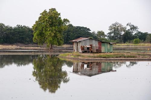 singburi - thailande 25