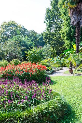 Botanical Gardens, Ferrara
