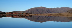 Reflections in Lake Camp (Maureen Pierre) Tags: reflectionslakecamp lake winter landscape view scene