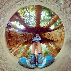 Park Guell, Barcelona, 360º #parkguell #guell #benheinephotography #perspective #gear360 #fisheye #galaxyS8 #ourlittleworld #4thdimension #photography #photographie #barcelona #barcelone #360degree #lifein360 #cam360 #travel #round (Ben Heine) Tags: benheinephotography photography composition light smartphone nature landscape beauty beautiful photo photographie art ifttt instagram benheine horizon benheineart