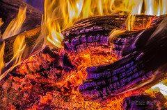 A Fire of Gidgee Coal (Cisc Pics) Tags: gidgee gigyea gidyea stancosta slimdusty cunnamulla bruce fire coals coal campoven nikon d7000 dx 18200mm riversidecaravanpark colour colours flames acaciacambagei queensland outback