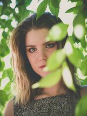 Rebecca (Vincent F Tsai) Tags: portrait art fashion eyes stare nature outdoor look intense young beauty beautiful pretty leaves tree olympusmzuiko75mmf18 panasonic lumixg5
