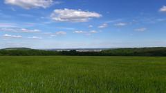 Vue sur Metz au loin depuis le plateau de Rozérieulles (Πichael C.) Tags: 210517 randonnée autour de rozérieulles hike balade nature forêt 57 metz champs vue sur au loin depuis le plateau