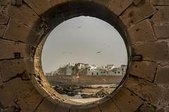 Essaouira (lil.ly) Tags: marocco
