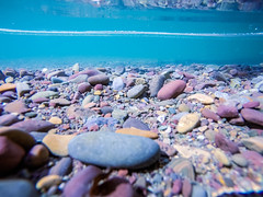 lake mcdonald in glacier national park montanaa (DigiDreamGrafix.com) Tags: park glacier national lake mcdonald glaciernationalpark lakemcdonald view reflection travel outdoors scene nature serene plant water natural tree mountain mount landscape tranquil calm pretty evening forest twilight mountains scenery usa scenic surface wild landmark peak woods reflect west wilderness terrain america international habitat rocks gravel stones underwater diving clear