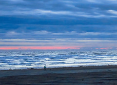 Walking in the Blue Hour (Colormaniac too - slowly catching up) Tags: pacific pacificocean pacificbeach walking bluehour nature solitude seascape landscape colorful pacificnorthwest washingtonstate topazimpression
