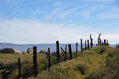 """...out ridin' fences..."" (nedlugr) Tags: california ca usa carrizoplain carrizoplainnationalmonument desperado eagles outridinfences fence sky hills clouds sanluisobispocounty rocks boulders"
