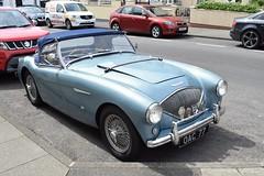 1953 Austin Healey 100-4 (>Tiarnán 21<) Tags: austin healey 1004 1953 blue uk portrush oac77