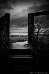 Stairway to sea (Fabrice Denis Photography) Tags: seascapephotography france noiretblanc bwphotography blackandwhite charentemaritime coastalphotography blackandwhitephotography monochromephotography paysages nieullauzières nouvelleaquitaine projet3652017 ciel stairs ocean seascapes seascapephotos coastal oceanphotography sea seascapephotographer blackwhitephotos monochrome nieulsurmer fr