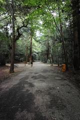 DP0Q0738 (chihiro2014) Tags: kyuuchuu ibarakiken 日本 jp