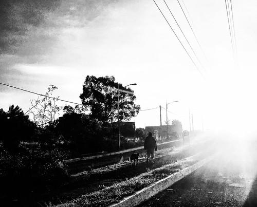 Caminar hacia La Luz debe de ser más fácil si vas acompañado