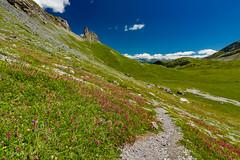 Euloi sur les hauts d'Ovronnaz (Switzerland) (christian.rey) Tags: leytron valais suisse ch ovronnaz grandpré euloi tsantonnaire tour alpes valaisannes swiss apls felurs montagne mountain sony alpha 77 tokina 1116 paysage landscape