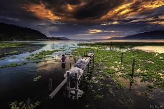 Ruin in Sentani Lake