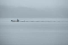 Return (Ged Slaughter Photography) Tags: loch lochfyne boat gedslaughter mist misty selenium haze hazy scotland argyllbute argyll return minimal