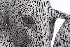 kelpies eye (D P Lynch) Tags: kelpies thekelpies falkirk scotland horses statue sculpture metal stainless steel canals locks parks