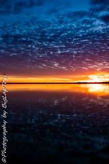 IMG_5935 (biglaptogs) Tags: barmera lakebonney riverland sa states sunsetsunrise