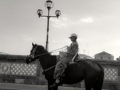 Perle strade (antonysambataro) Tags: cavallo hourse streetphotos street bw canon1100d canon sicilia sicily ceramica