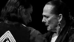 Toni El Pelao y La Uchi, bailaor@s (Jorge Biancotti) Tags: flamenco bailaora bailaor