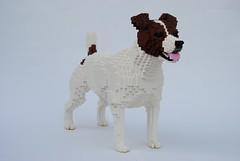 Dog (Felix Jaensch) Tags: dog lego sculpture mammal pet animal jack russel