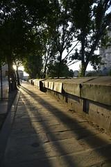 Paris (geraldineh.dutilly) Tags: bouquiniste sunset light paris