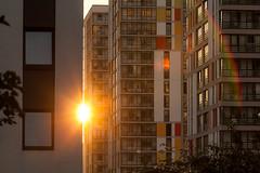 Европейский берег (Девелоперская компания) Tags: солнце закат закатвгороде урбан город дома архитектура тепло лето настроение счастье sun sunset sunsetinthecity urban home architecture warmth summer mood happiness