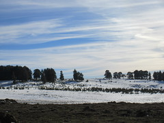 Edge of snow fields, Middle Atlas near Azrou, Morocco (Paul McClure DC) Tags: middleatlas morocco jan2017 almaghrib ifrane azrou mountains winter scenery snow northafrica
