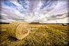 Coria, Extremadura, España. (EcoFoco juanma.coria) Tags: cielos coria españa extremadura nubes pacas paja pastos primavera secadero valderritos valledelalagón xivrallyadesval