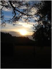 Al anochecer .. (margabel2010) Tags: cieloytierra puestasdesol ramas solysombra siluetas colina horizonte blanco blancoyazul negro blancoynegro nubes árbol árboles