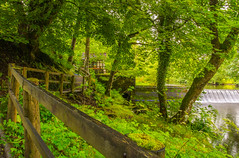 Following The Water Trail (williamrandle) Tags: watertrail lakevyrnwy rivervyrnwy wales powys uk summer 2017 fence dam wier water waterfall trees green shade path pool pond pretty serene building nikon d7100 sigma1835f18art outdoor landscape