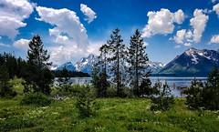 Grand Teton National Park (ron.bohlander) Tags: grandtetonnationalpark