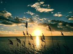 Colorful sunset (pialangmach) Tags: fresh sunlight landscape cloudscape clouds sky light inlet silent iphone beautiful awesome nature freedom moody mood sun rays evening silhouettes denmark water colorful peaceful