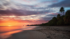 Last Light (tommiaarnio) Tags: grande anse des salines martinique france lesser antilles french west indies caribbean sea martinique's beach sand ocean waves longexposure long exposure palm tree footprints sunset red orange colors clouds tommi aarnio tommy aarnyo no person people