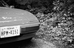 (berangberang) Tags: porsche vintagecar forest woods ferns exakta 924
