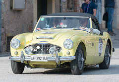 Mille Miglia, Gubbio 2017 (MikePScott) Tags: 1006 austinhealey camera car events gubbio italia italy millemiglia nikon28300mmf3556 nikond600 transport umbria