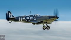 Seafire landing on the clouds (Tony Calvert) Tags: supermarine spitfire seafire landing clouds duxford iwm flying legends warbird warbirds ww2 british