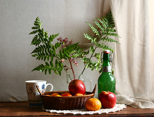 Frutas y helechos
