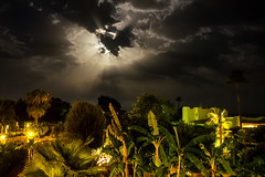 Moonbeams (Jens Haggren) Tags: moonlight moonbeams clouds palmtrees night lights mallorca spain jenshaggren