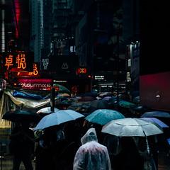 heavy rain, stand alone (RyanLeung1997) Tags: fujifilm fujifilmxseries fujifeed xt2 xseries fuji hongkong hk discoverhongkong 香港 streetphoto streetphotographers streetphotographer vscofilm vscoedit vscocolors vsco vscobest vscogram colors vscocool ektar kodak vscomoment street streetphotography 攝影 撮影