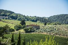 Toscana (M. Ángeles Cuenca) Tags: toscana tuscany italia italy paisaje landscape house casa tree arbol arboles