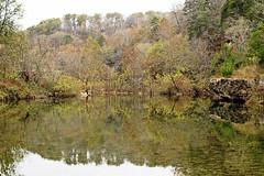 Missouri Road Trip 2016 - Ozark National Scenic Riverways - Jacks Fork (Dis da fi we (was Hickatee)) Tags: ozark national scenic riverways spring county missouri road trip jacks fork