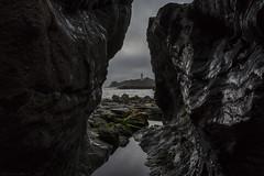 Rocks (MarkWaidson) Tags: godrevy lighthouse beach rocks pool sea seaweed