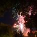 Feu d'artifice du 14 juillet aux chateau des ducs de Bretagne - Nantes (2)