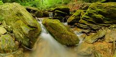 Kelly Run (chmptr) Tags: paysage nature landscape ruisseau creek eau water fall cascade