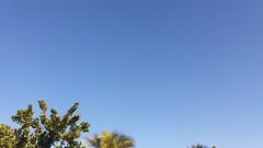 sábado, 22/07/17 ☁ Vitória, Espírito Santo (ohmystunning) Tags: céufienanuvem clouds nuvens cloud nuvem céu sky nublado cloudy photography fotografia vitória espírito santo es july utopiananuvem paysage scenery nature tree streets city summer natureza blue white