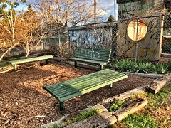 Local Benches for Local People (Rantz) Tags: rantz mobilography 365 roger doesanyonereadtagsanymore mobiligraphypad2016 psad2016 victoria melbourne parkbench bench