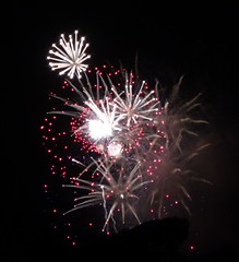 Bearing no fruit?_DSC01014 (jaciii (off&on)) Tags: fireworks independenceday 4july2017 red white brown black