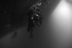 170721-N-ON977-0038 (U.S. Pacific Fleet) Tags: eod eodmu5 jmsdf jdsbungo diving limpet scuba japan mcm ctf75 fccp mc2alfredcoffield aichi jp