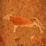 DSC06230 - NAMIBIA 2017 thumbnail