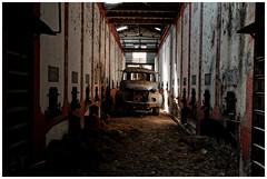 Le Berliet oublié (Pascal.M (bong.13)) Tags: camion camargue bouchesdurhone urbex abandonné berliet cave provence nikon d3200 ancien france p
